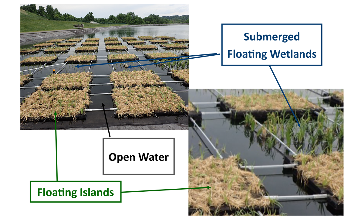 Floating Wetland Solutions
